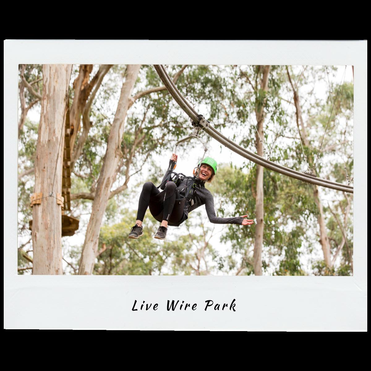 Live Wire Park Victoria